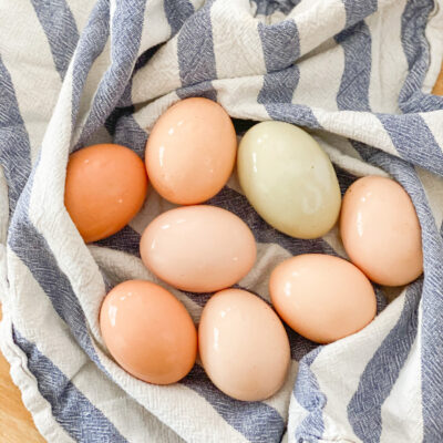 Guide to Safely Using Farm Fresh Eggs